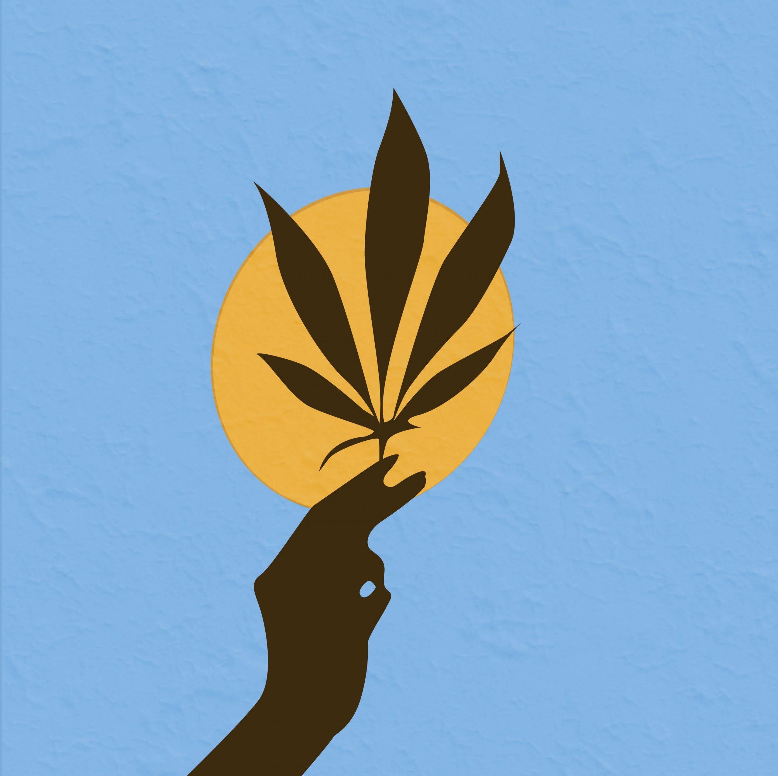 Cannabis illustration for 360 magazine