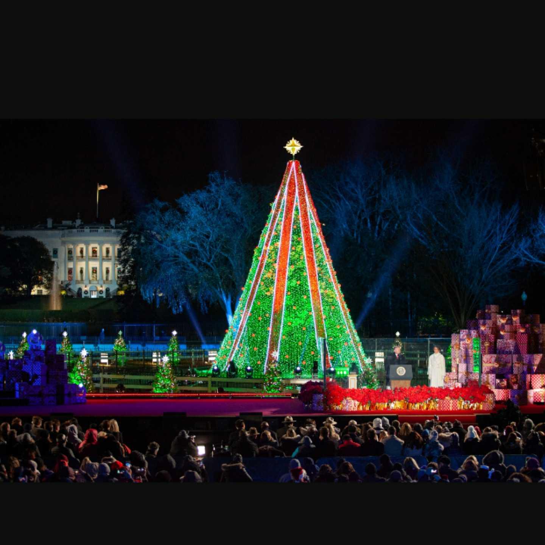 National tree lighting , 360 MAGAZINE