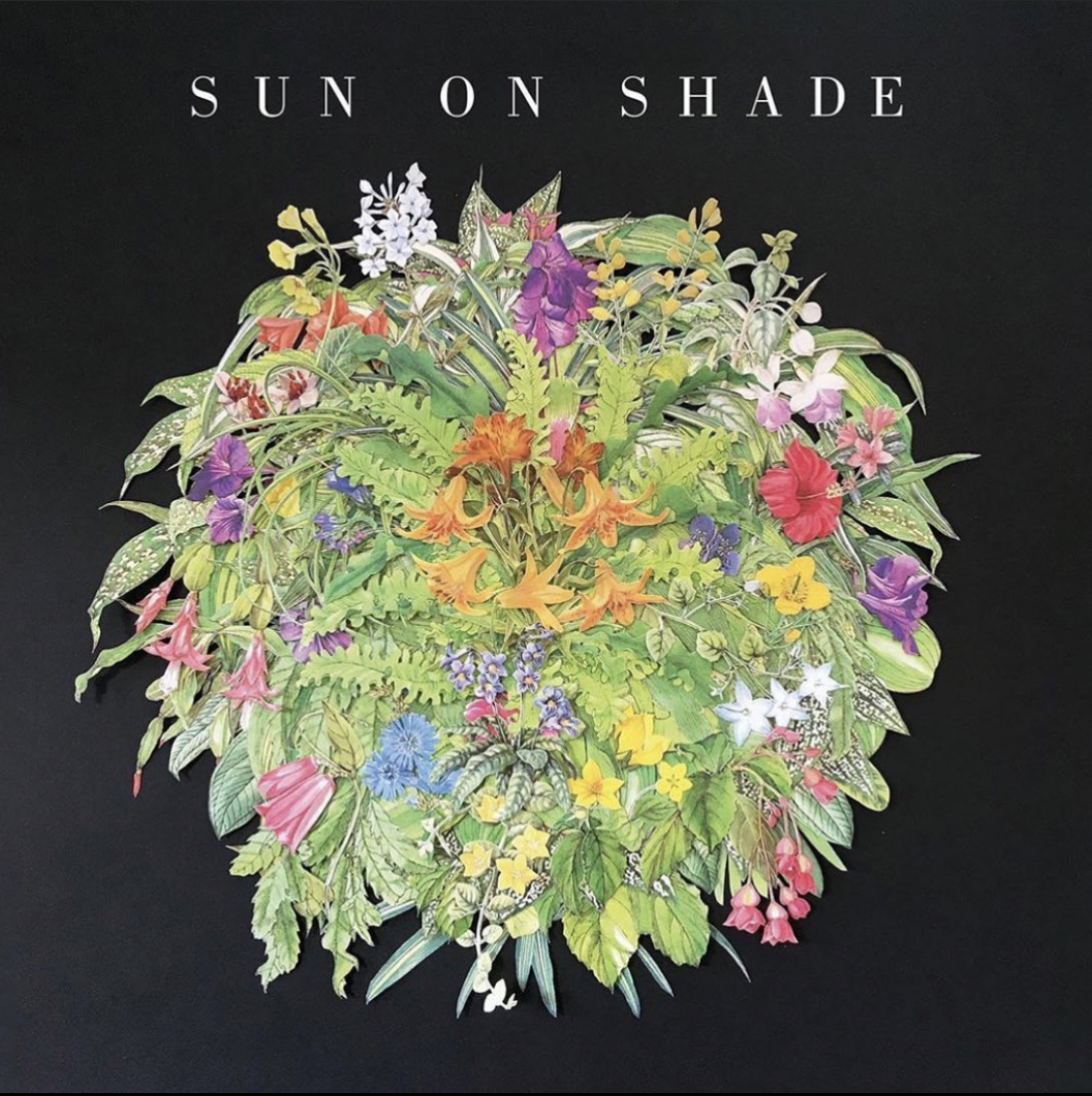 Sun on Shade, 360 Magazine