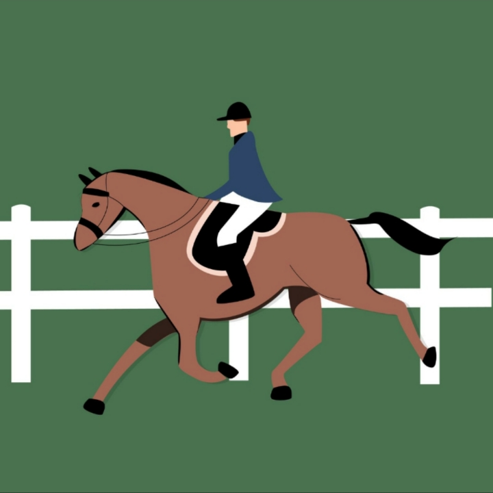 Horse and Jockey illustration by Ivory Rowen