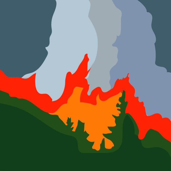 Kaelen Felix illustrates wildfire article for 360 MAGAZINE.