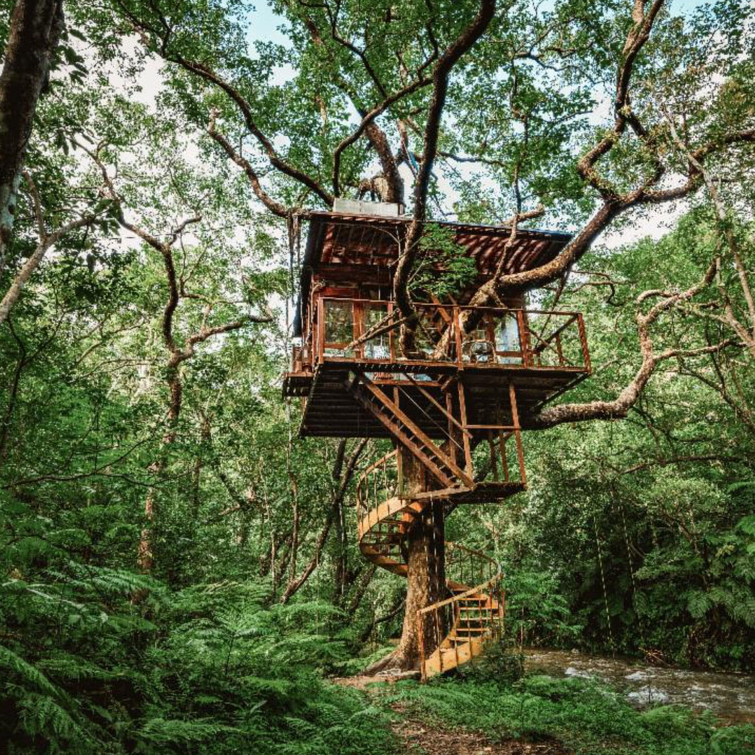 Treeful Treehouse EcoResort in Okinawa (© Treeful Treehouse EcoResort), Geoffrey Weill Associates, and Japan National Tourism Organization for 360 Magazine