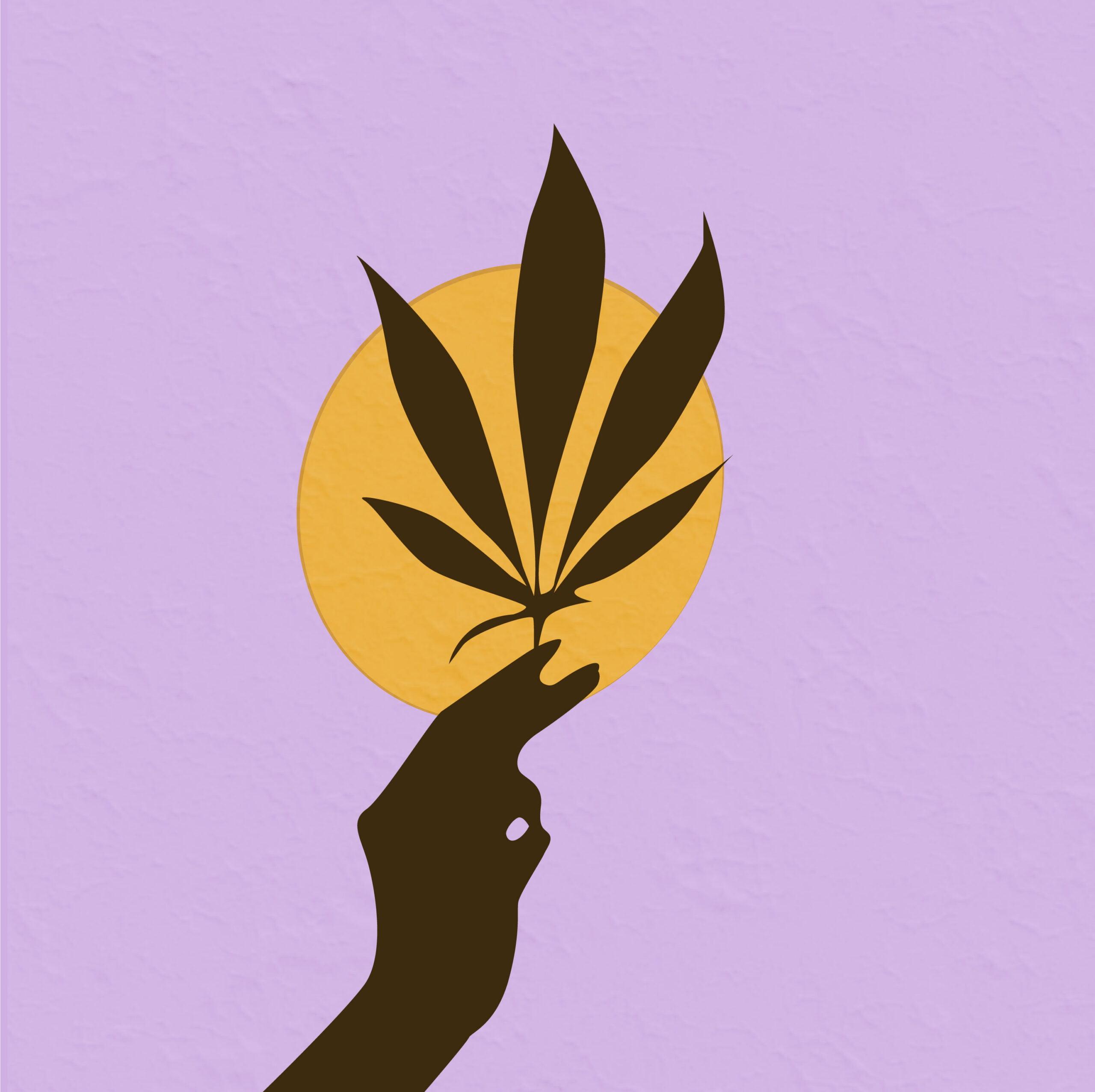 Cannabis illustration by Rita Azar for 360 Magazine
