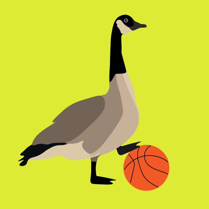Canadian Goose with basketball illustration by Heather Skovlund for 360 Magazine