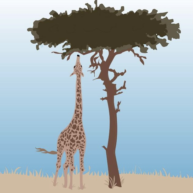 safari illustration by Heather Skovlund for 360 Magazine