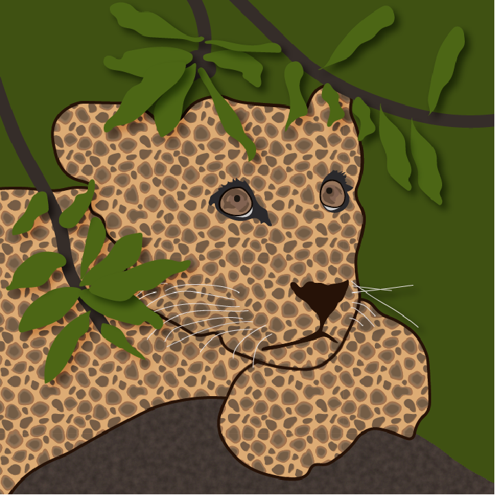 Cheetah illustration by Heather Skovlund for 360 Magazine