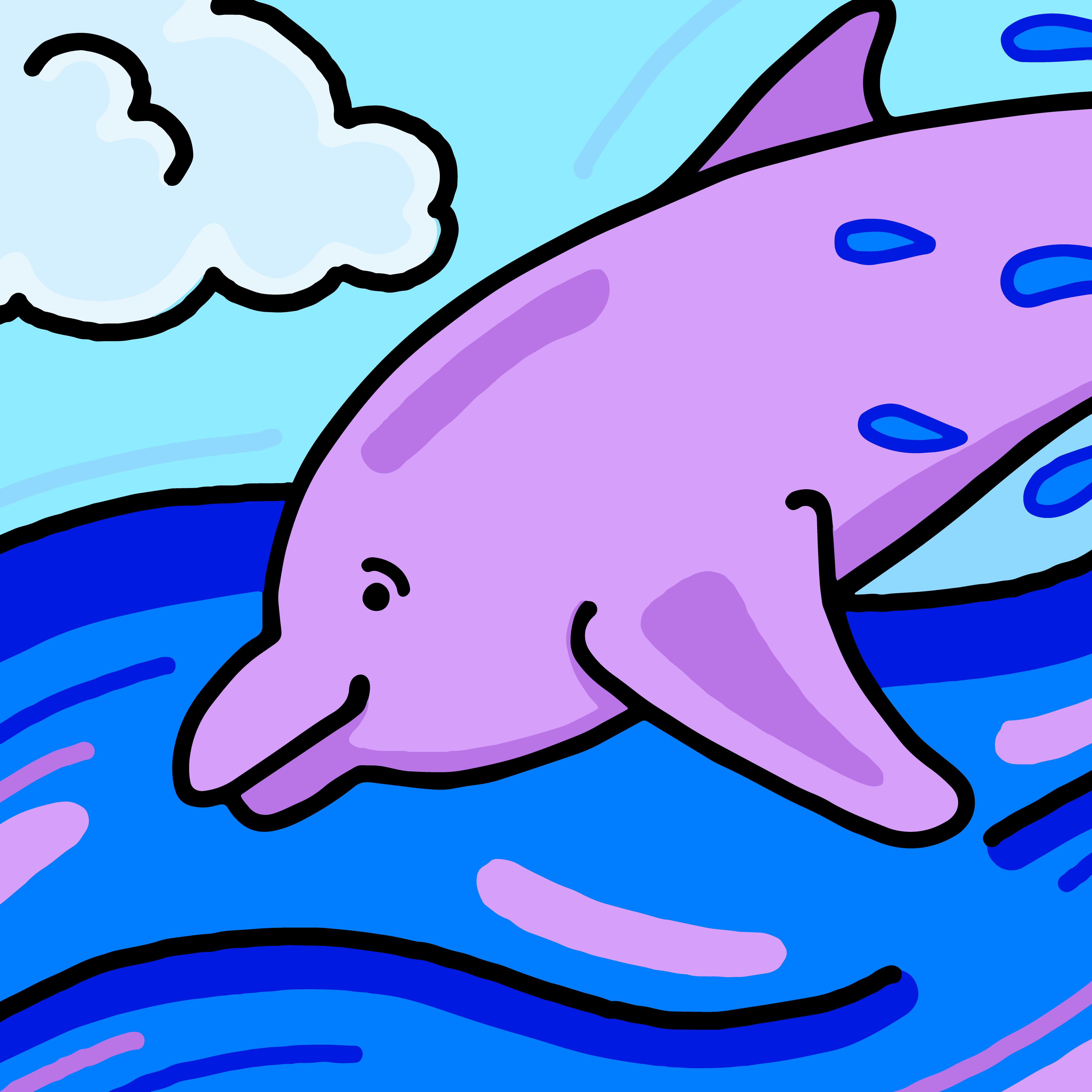 dolphin via Mina Tocalini for use by 360 Magazine