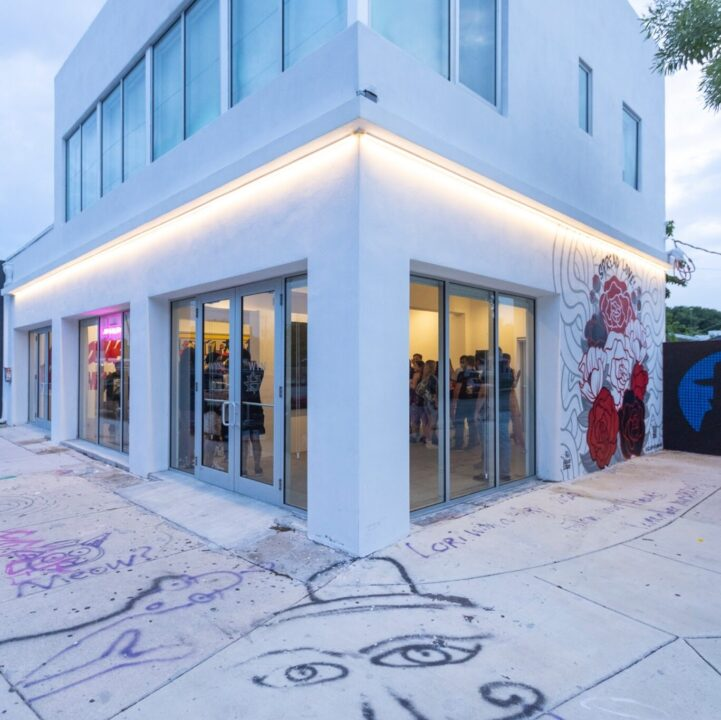 """WYN 317's new """"Mystery in Little Haiti"""" Mural by SONNI from Quinn Edgar for use by 360 Magazine"""