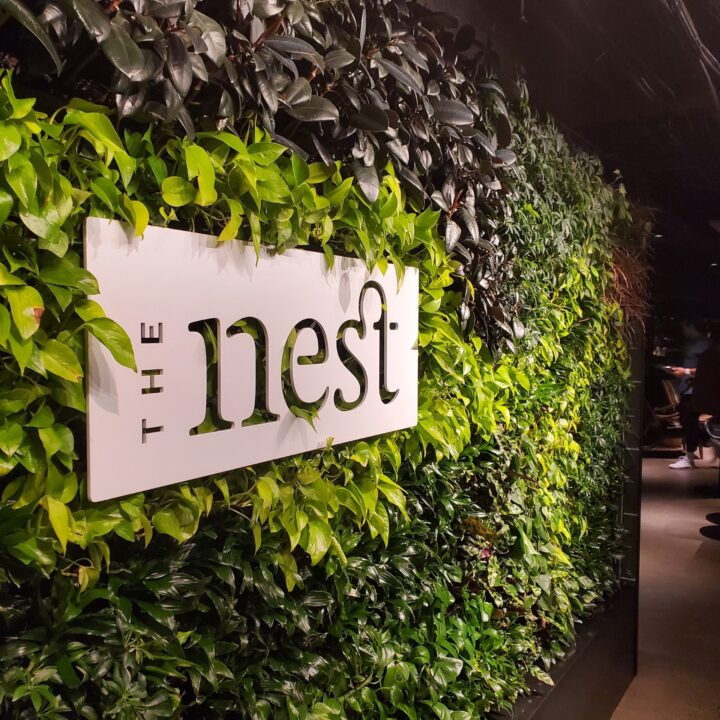 The Nest Seattle image via Patrick Thomas Cooper for use by 360 Magazine