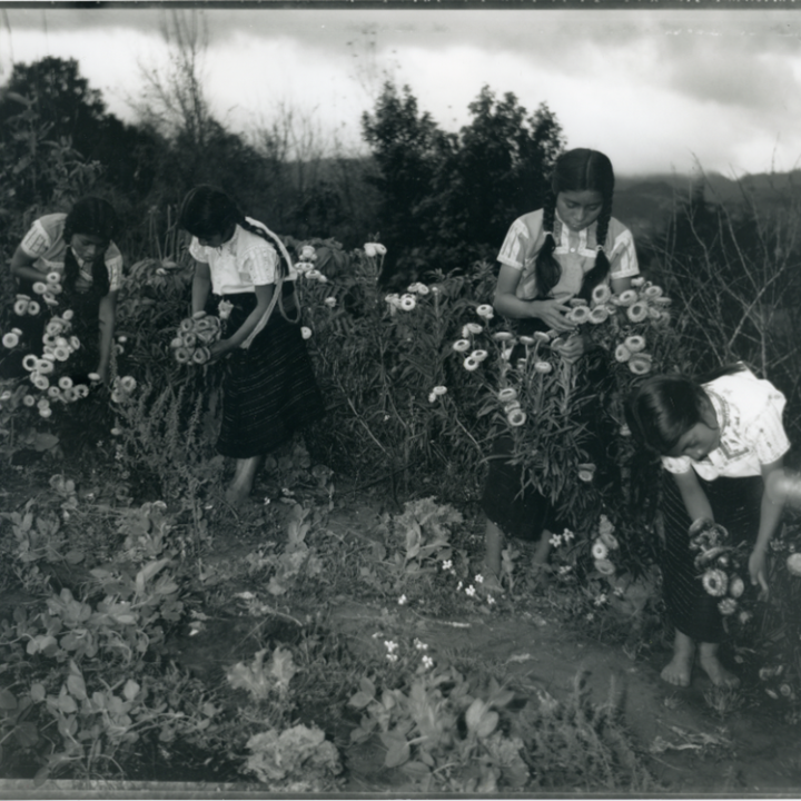 """""""My Friends are Picking Flowers"""" by Salvador Gomez, Jiminez and Wendy Ewald via Ramsey Hoey of Carol Fox Associates for use by 360 Magazine"""