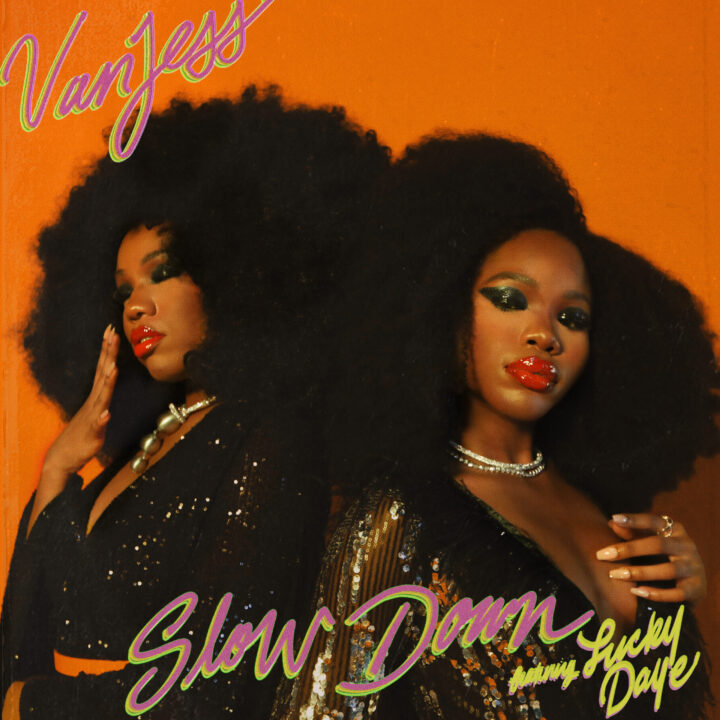VanJess Slow Down artwork from nina lee, The Oriel Co for use by 360 Magazine