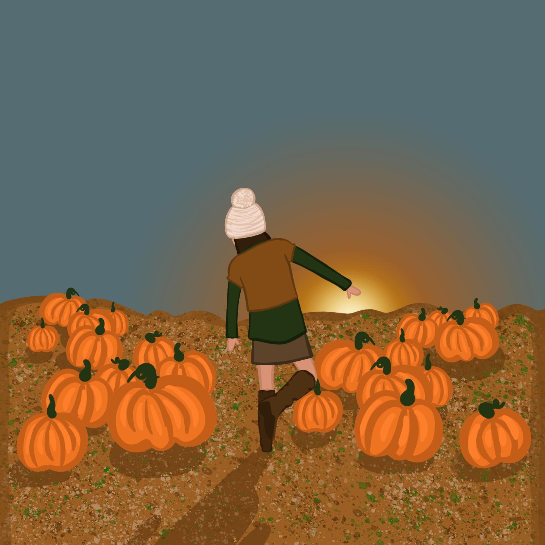 Pumpkin Patch Illustration by Reb Czukoski for use by 360 Magazine