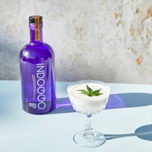 INDOGGO® Gin image for use by 360 magazine